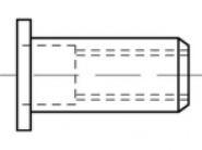 BLINDNIETMUTTER M 4X 6X11.0